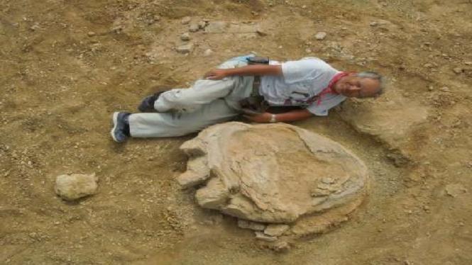 Fosil kaki dinosaurus