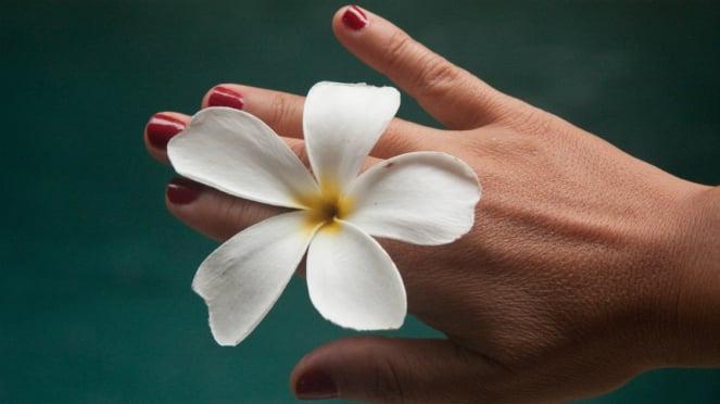 Ilustrasi tangan wanita.