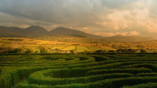 Peace Maze di Irlandia Utara.
