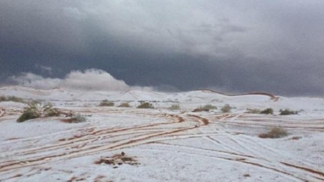 Salju turun di wilayah gurun di Arab Saudi.