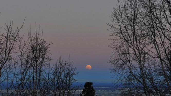 Gerhana Bulan sebagian pada malam tahun baru mulai muncul