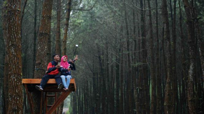 5 Spot Foto Instagramable Di Precet Forest Park Malang