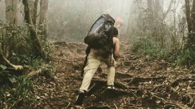 Jalur pendakian Gunung Cikuray.