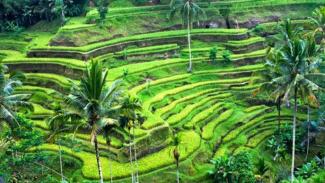Pulau Bali.