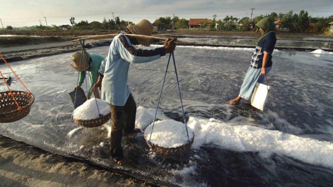 Produksi Garam di Indonesia Turun.