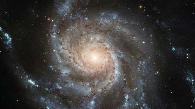 Ilustrasi alam semesta.