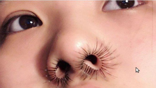 Bulu hidung ekstensi