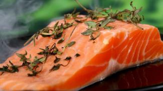 Ikan salmon.