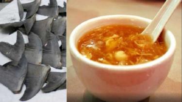 Sup sirip ikan hiu.