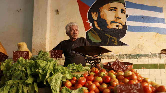 Seorang penjual sayur sedang menunggu pembeli, dengan latar lukisan Presiden Fidel Castro, di sebuah pasar di Havana, Kuba.