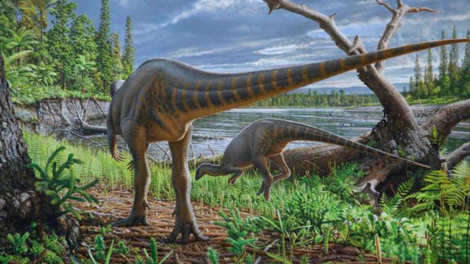 Ilustrasi dinosaurus seukuran ayam kalkun, Diluvicursor pickeringi