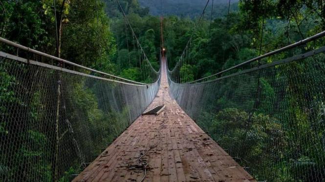 Jembatan Gantung Situ Gunung Sukabumi yang Menakjubkan