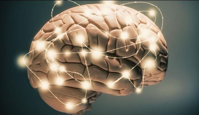 Ilustrasi otak cerdas.