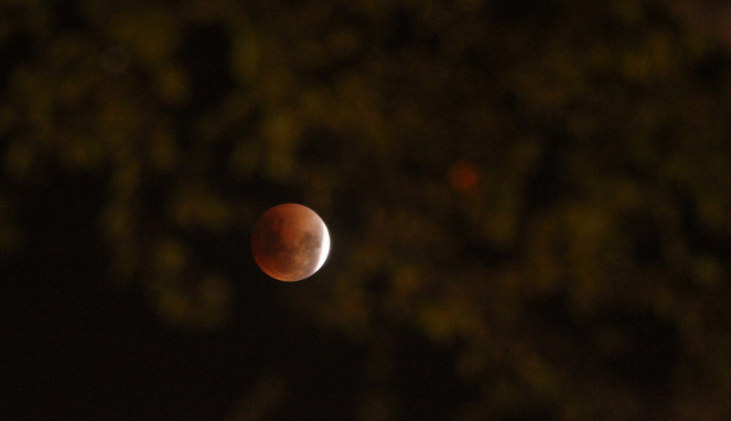 Fenomena Gerhana Bulan Super Blue Blood Moon