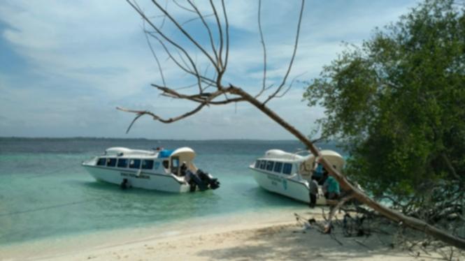 Pulau Adrenan Maluku Tenggara