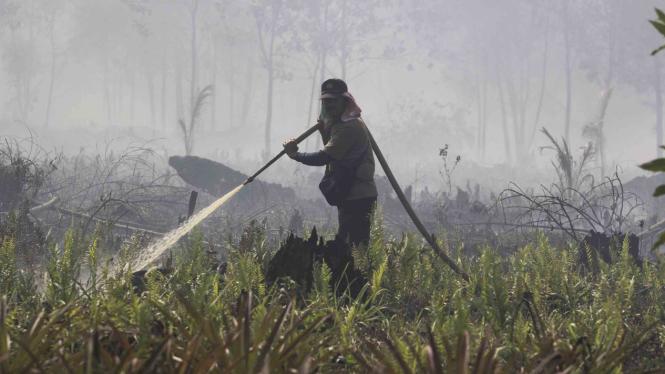 Kebakaran hutan gambut di Riau.