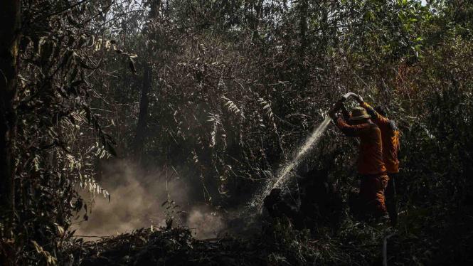 Kebakaran hutan gambut di Riau