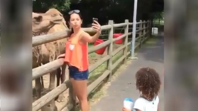 Cewek selfie dengan unta.