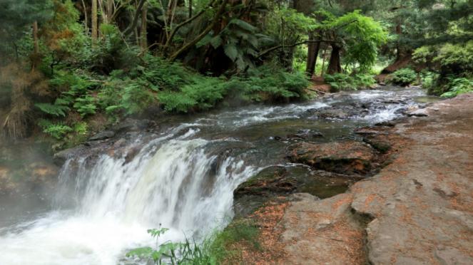Sungai air panas di Rotorua, Selandia Baru.