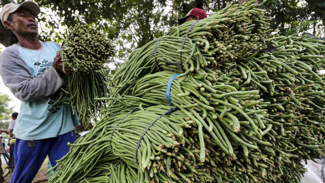 Inflasi Rendah, Upah Buruh Tani Dan Bangunan Naik