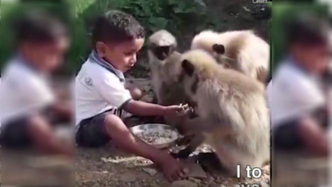 Anak bersahabat dengan monyet.