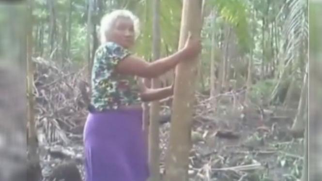 Nenek panjat pohon pinang.