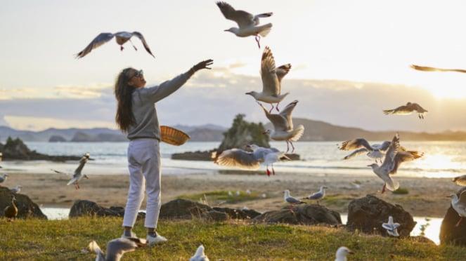 Nadine Chandrawinata di Pulau Utara Selandia Baru.