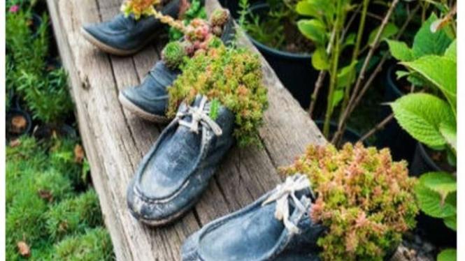 Pot dari sepatu bekas