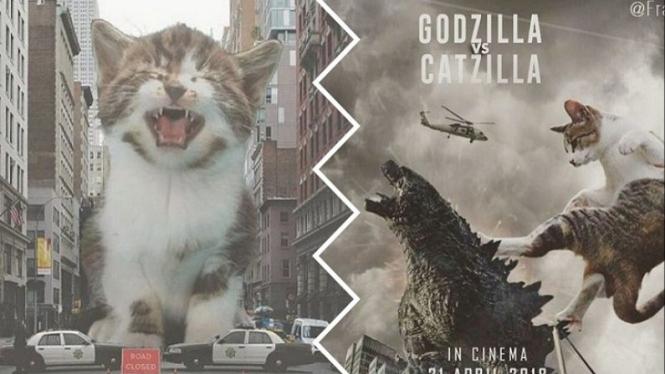 Unduh 89+  Gambar Kucing Lucu Editan Paling Bagus HD