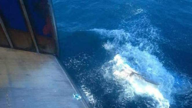 Jenazah ABK dibuang ke laut.