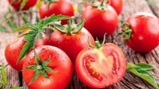 Buah tomat.