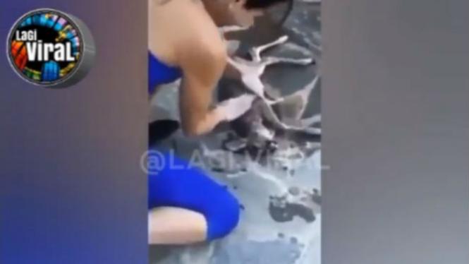 Wanita selamatkan binatang yang tenggelam.