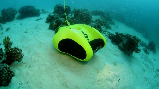 Robot ROV