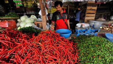 Pedagang menyortir cabai merah di Pasar Induk Rau, di Serang, Banten
