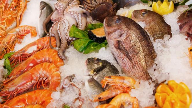 Seafood/boga bahari.