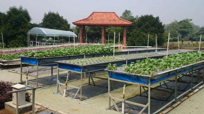 Agrowisata Edukasi Inagro