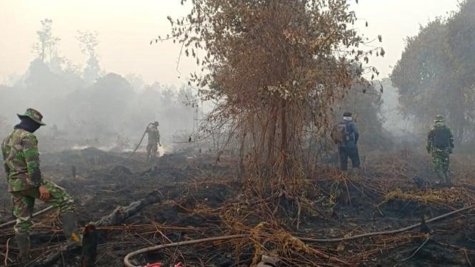 Hasil gambar untuk kalimantan tengah Kebakaran Gambut