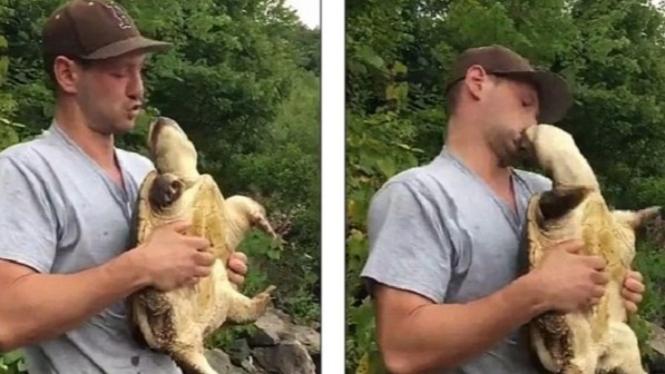 Ciuman menyakitkan dari kura-kura.