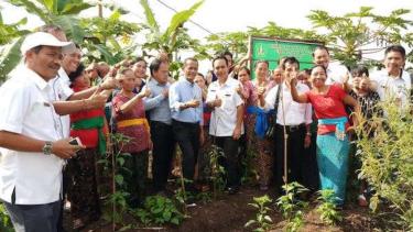 Pengembangan KRPL oleh BKP Kementan.