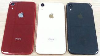 Tampang bocoran iPhone anyar.