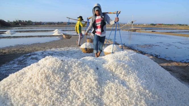 Pekerja memanen garam di Desa Bunder, Pamekasan, Jawa Timur