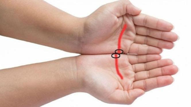 Ilustrasi garis cinta di telapak tangan.