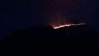 Kebakaran di lereng gunung di Jawa Timur.