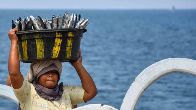 Seorang perempuan mengangkat ikan tongkol hasil tangkapan nelayan di pantai Batulayar, Kecamatan Batulayar, Lombok Barat, NTB