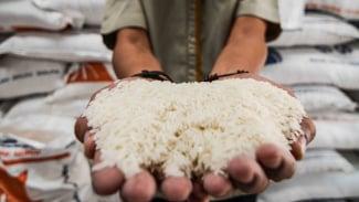 Ilustrasi beras.