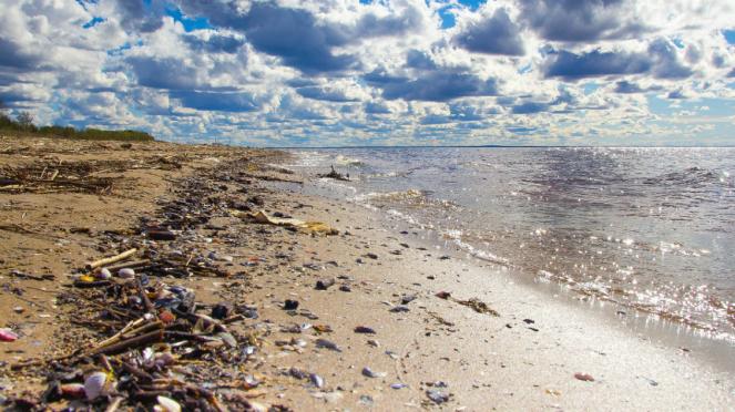 Ilustrasi sampah di pantai.