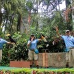 Bird Park, Royal Safari Garden Puncak.