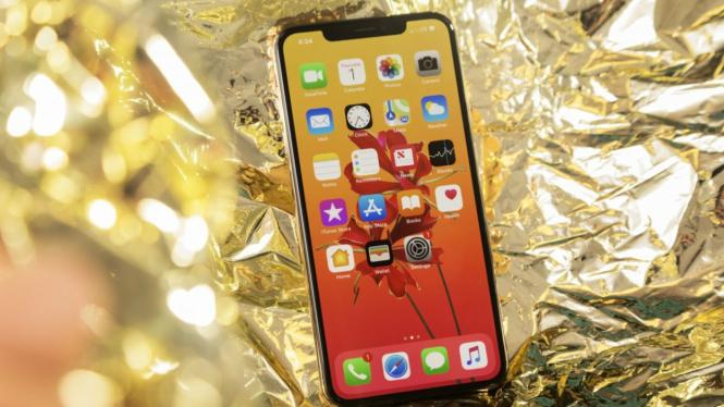 aplikasi mata-mata iPhone