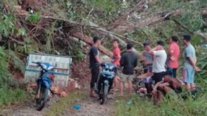 Bukit Siau Merangin di Jambi Longsor, Listrik Beberapa Desa Terputus