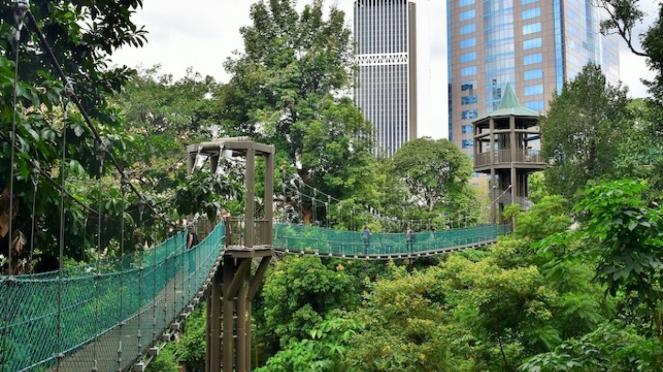 Kuala Lumpur Bird Park, Malaysia. Summer foto: deenamik.com